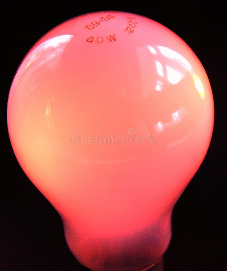 Lampadina Della Luce Rossa Immagini Stock