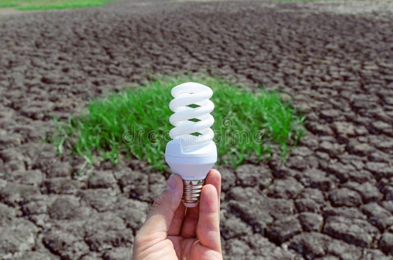 Lampadina di Eco a disposizione sopra il deserto immagine stock libera da diritti