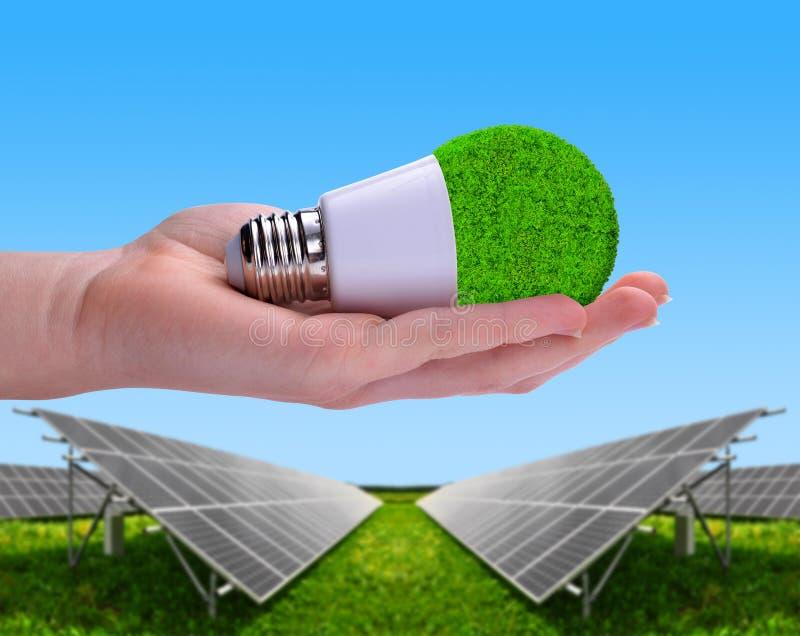 Lampadina di Eco LED a disposizione nei pannelli di energia solare del fondo immagini stock