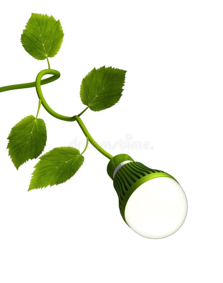 Lampadina principale con il gambo verde immagine stock libera da diritti