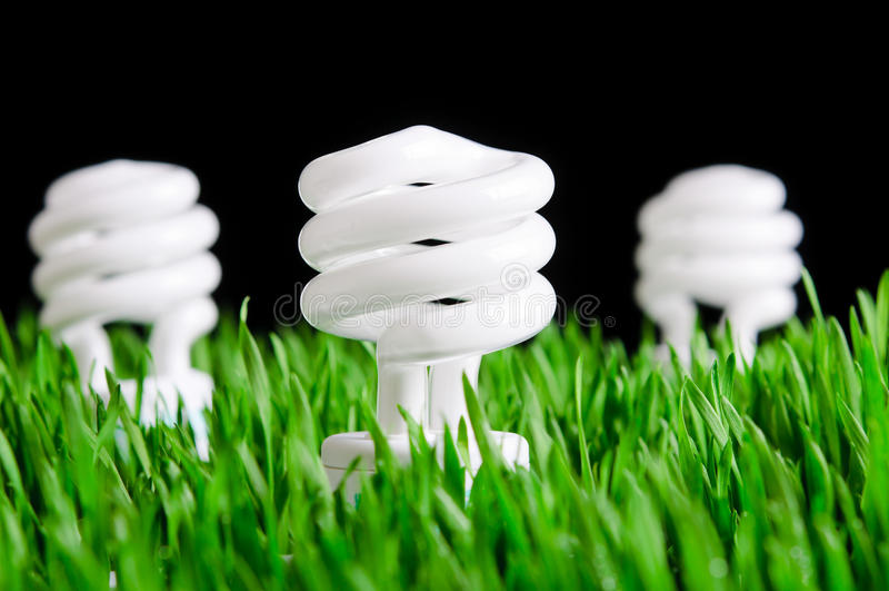 Lampadine verdi di energia - concetto ambientale immagini stock libere da diritti
