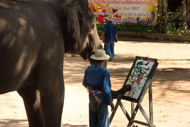 Lampang THAILAND Januari 29, 2017 elefantshow royaltyfria foton