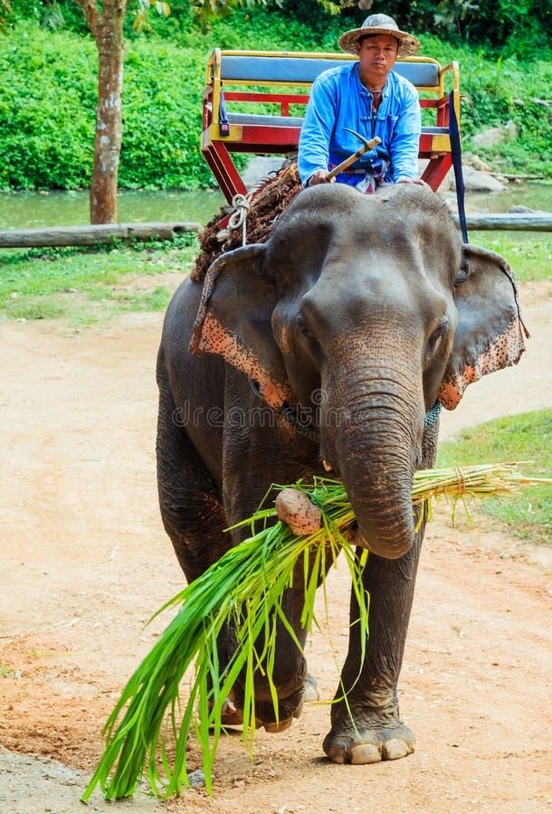Lampang, Thailand - November 26, 2017: Mahout and tourist ride o stock photography