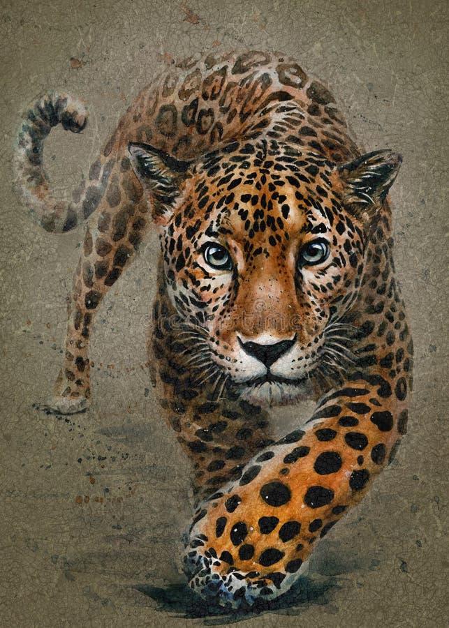 Lamparta drapieżnika akwareli obrazu zwierząt tła tekstura obrazy royalty free