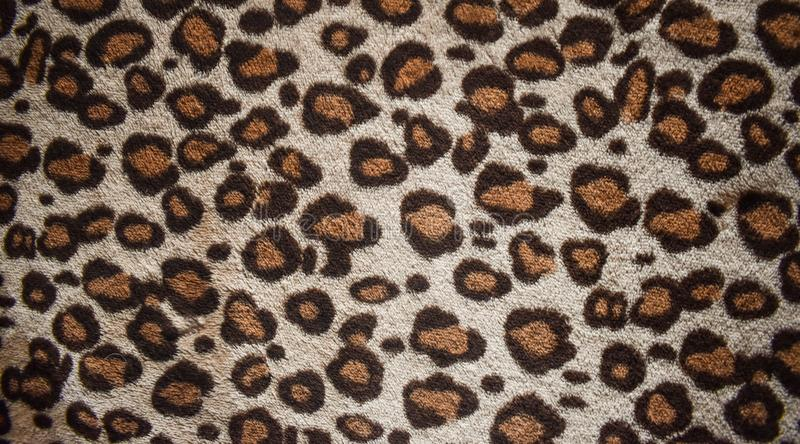 Lamparta wzoru projekt, modny naturalny futerkowy tło, lamparta futerka wzoru bezszwowa istna kosmata tekstura Moda, trend 2019 obraz stock