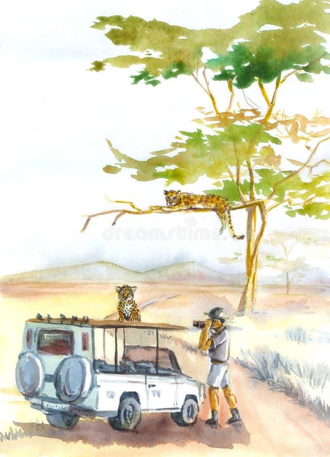 Lamparty i safari akwarela ilustracja wektor