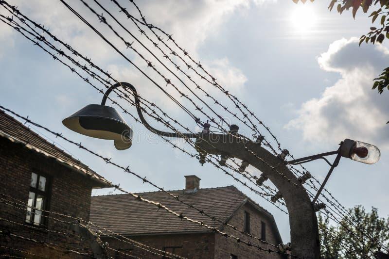 Lampe auf einem Stacheldraht schließt das Ausrottungslager Auschwitz II-Birkenau in Brzezinka, Polen ein lizenzfreies stockfoto