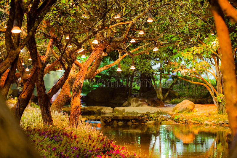 Lampe avec l'arbre en parc la nuit, style de vintage photos stock
