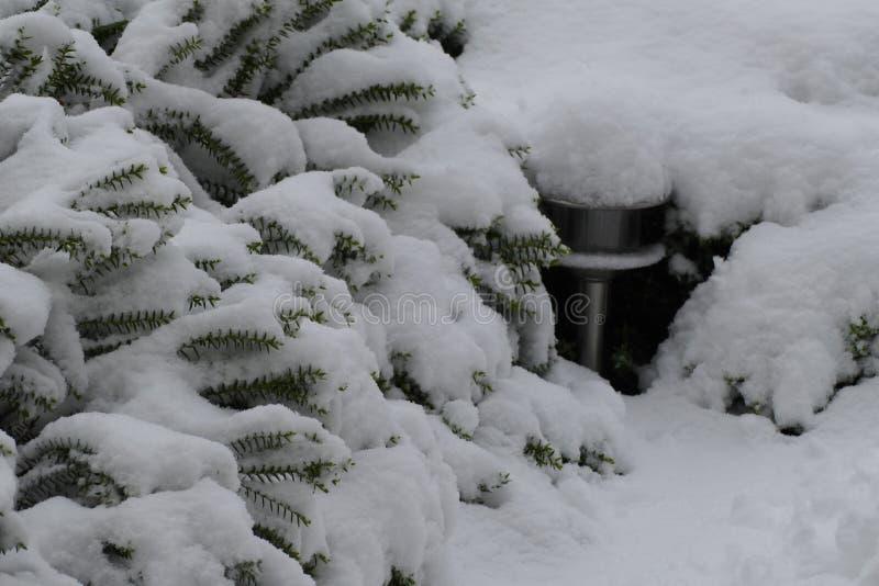 Lampe de jardin sous la neige photographie stock