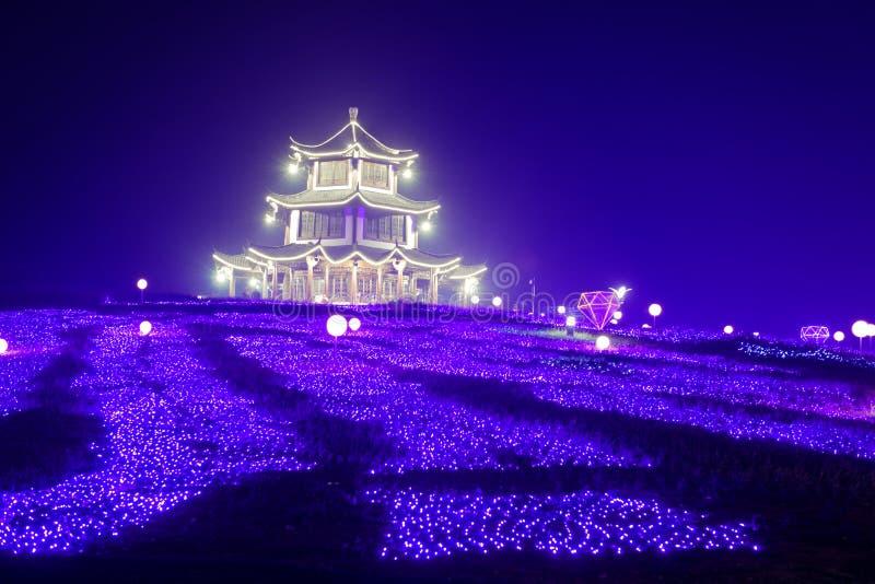 Lampes au néon avec différentes formes photographie stock libre de droits