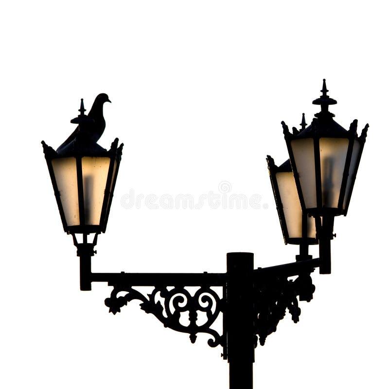 Lampes et pigeon assidenous. photographie stock libre de droits