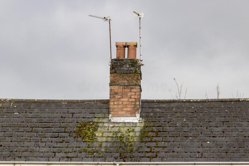 Lampglas på ett mossigt tak fotografering för bildbyråer