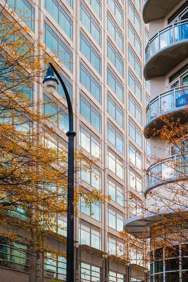 Lampione sui precedenti dei grattacieli immagine stock libera da diritti