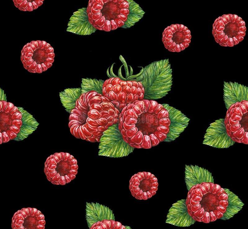 Lampone rosso della foresta isolato su fondo nero Illustrazione dell'acquerello Lavoro manuale Reticolo senza giunte per il diseg royalty illustrazione gratis