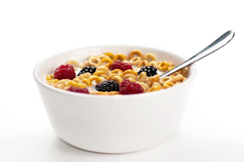 Lamponi e latte delle more dei cereali in un arco fotografia stock libera da diritti