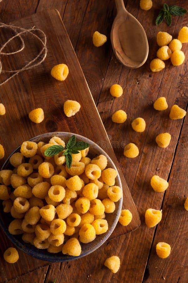 Download Lamponi Gialli Organici Crudi Fotografia Stock - Immagine di bacche, vitamina: 55351108
