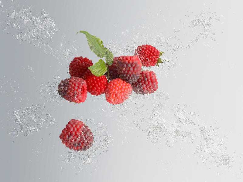 Lamponi rossi maturi deliziosi con la spruzzata dell'acqua royalty illustrazione gratis