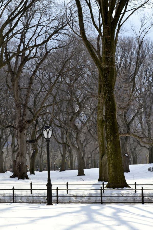 Lampost en la nieve imagen de archivo