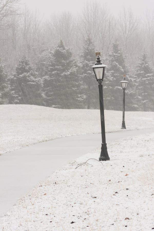 Lampost in Sneeuw dichtbij Weg royalty-vrije stock foto's