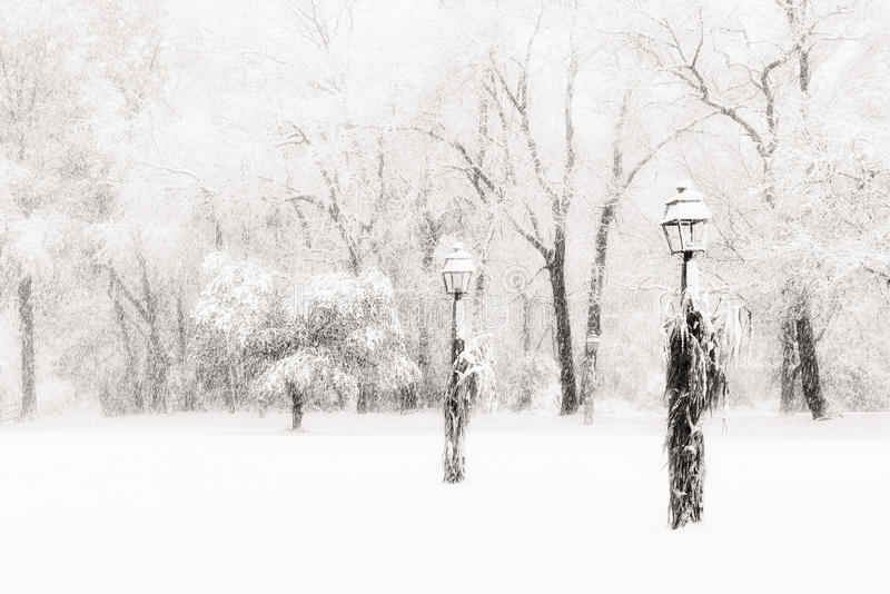 Download Lamposts In Blinding Snow Storm Stock Image - Image: 31772209
