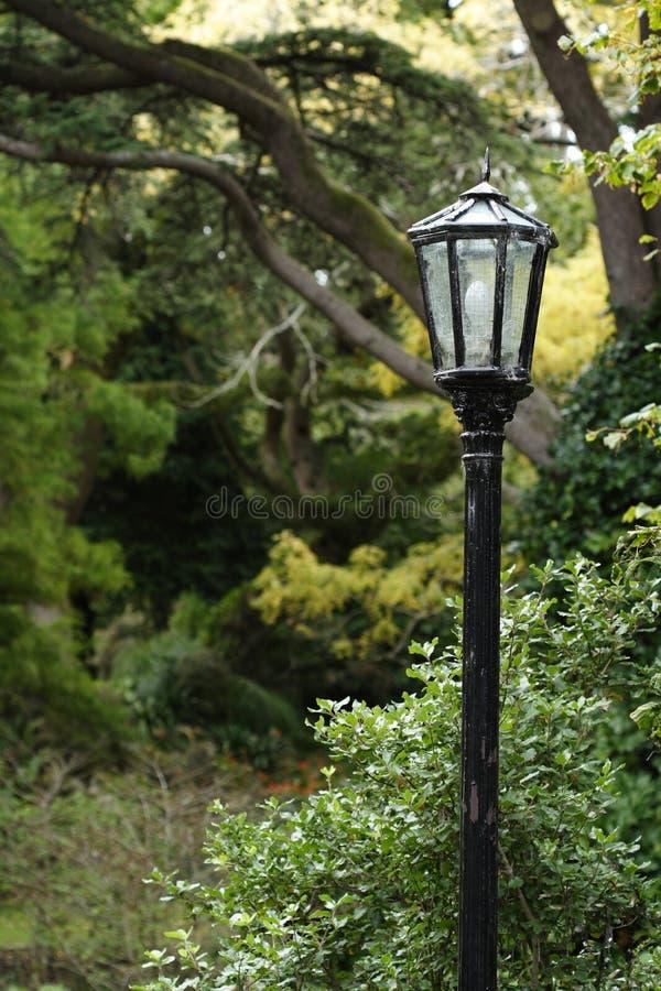 lamppost ввел сбор винограда в моду стоковые изображения