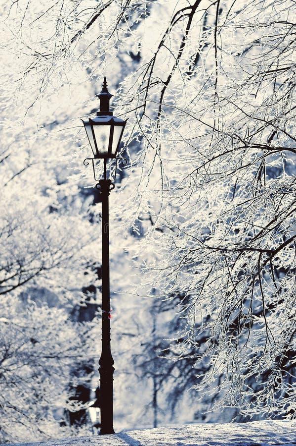 Lamppost fotografering för bildbyråer