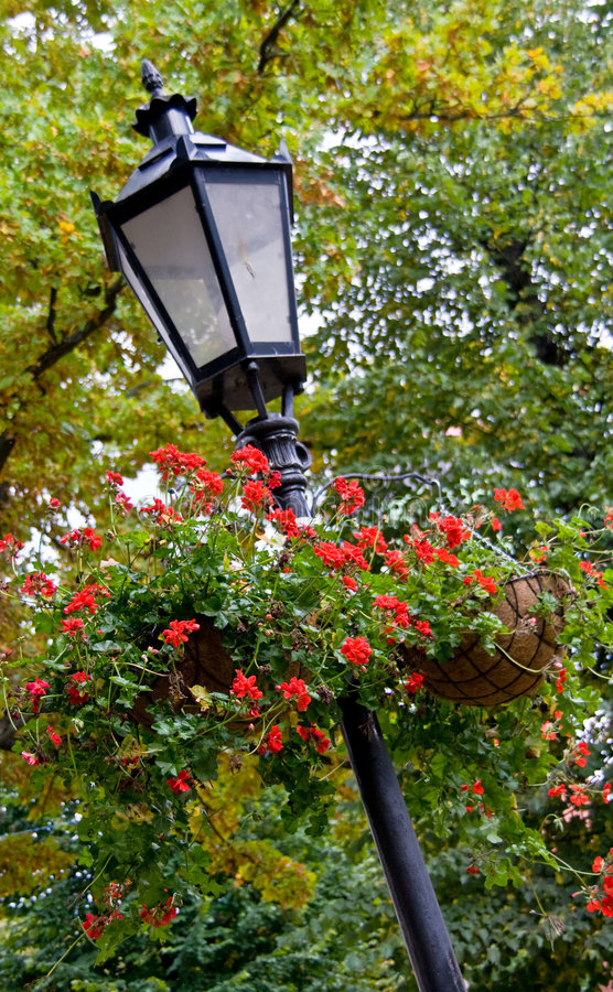 Download Lamppost With Hanging Baskets Stock Photography - Image: 3490592
