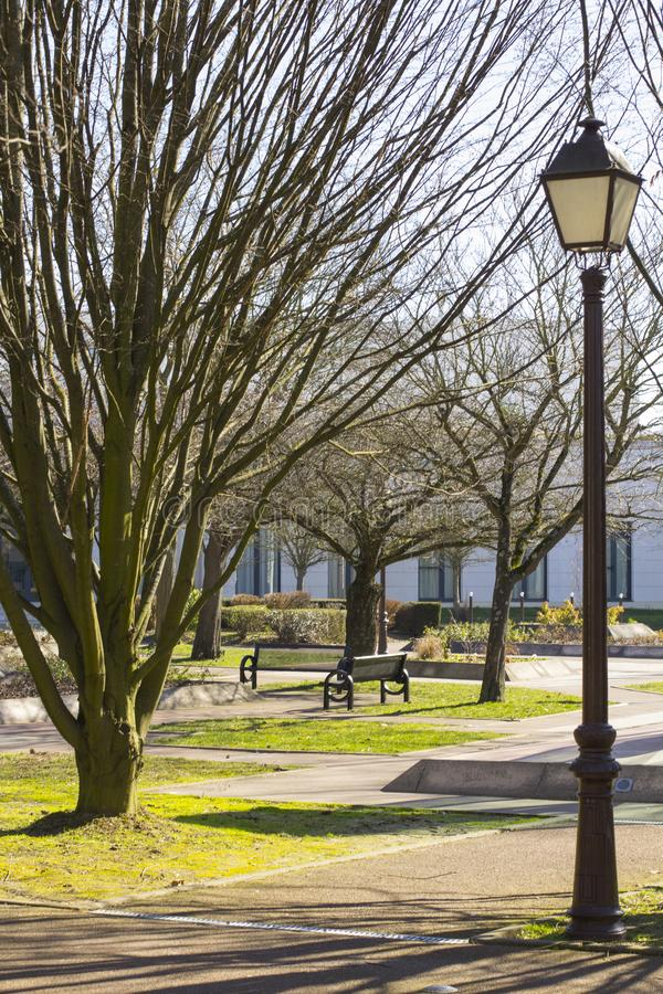 A lamppost with an iron wrought-iron lantern in retro style in the background is an early spring park with trees and benches.  royalty free stock image