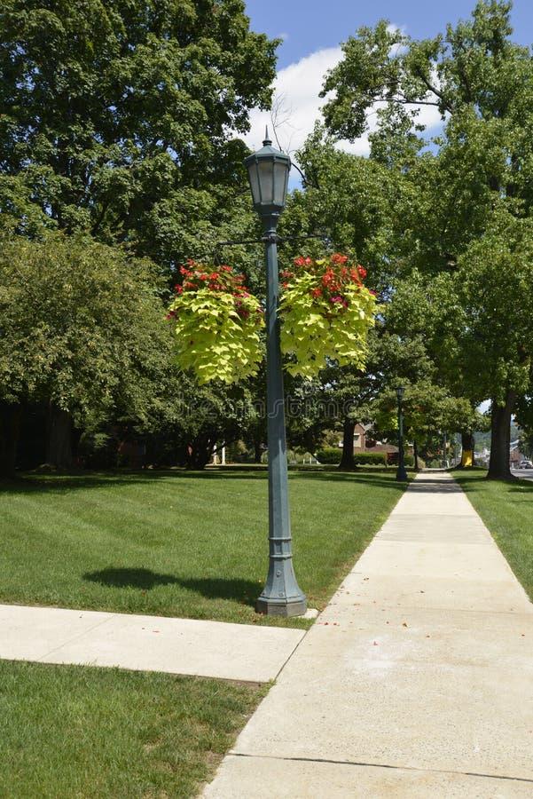 Lamppost med två hängande korgar arkivfoto