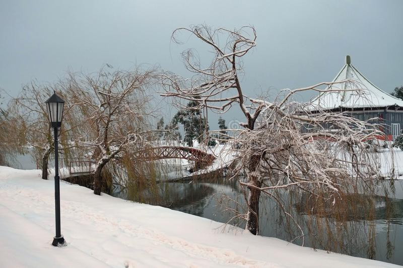 A lamppost, snow covered willows and bridge stock photography
