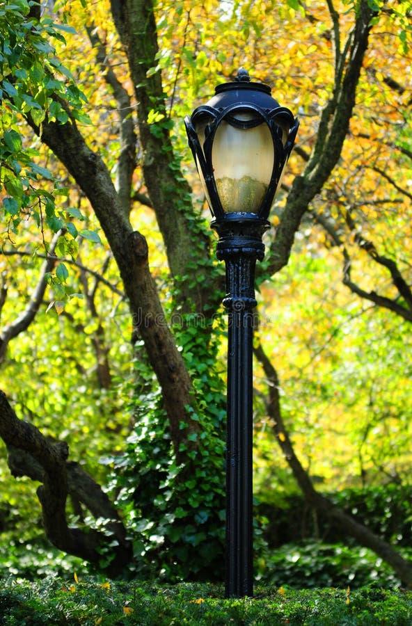 lamppostpark arkivbild
