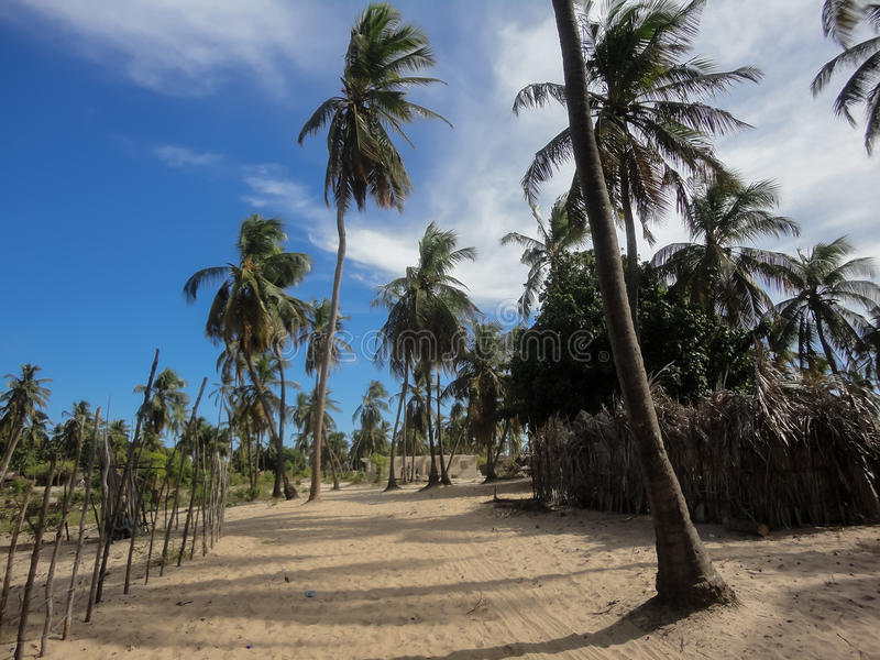 Lamu-Insel in Kenia stockbilder