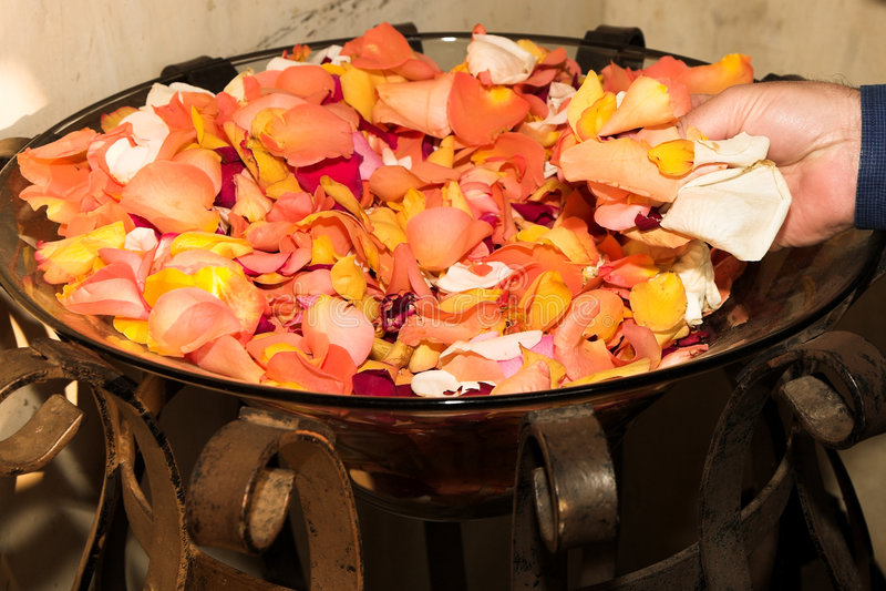 Lanç Wedding Das Pétalas Cor-de-rosa Fotos de Stock Royalty Free
