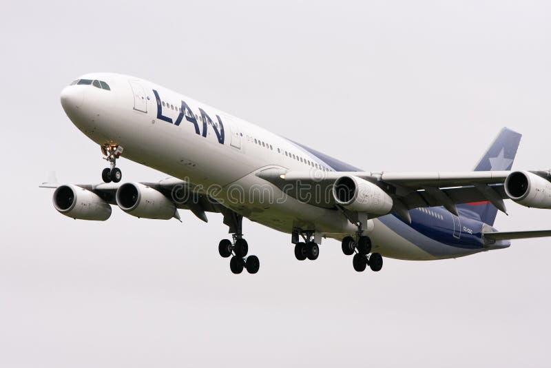 LAN för flyg för 300 flygbolag för flygbuss a340 royaltyfri bild