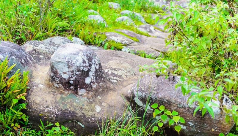 Lan Hin Pum (естественное явление) на PA Phu Hin Rong Kla национальном стоковые изображения