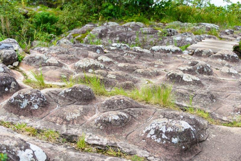 Lan Hin Pum (естественное явление) на PA Phu Hin Rong Kla национальном стоковое изображение