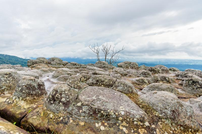 Lan Hin Pum. Beautiful nature landscape of green forests on Lan Hin Pum viewpoint with strange stone shapes caused by erosion is a famous nature attractions of royalty free stock photos