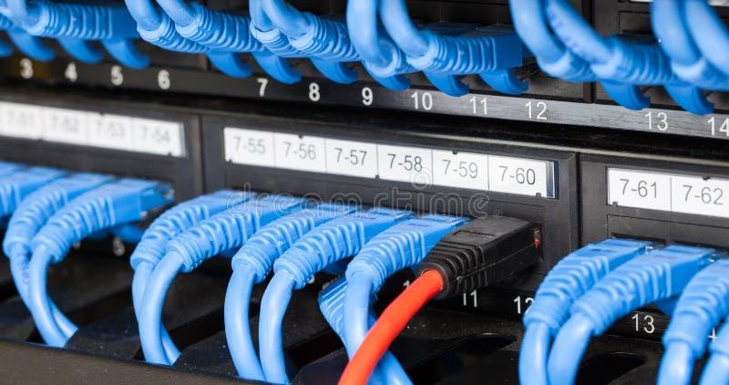 LAN kabel Łączący wyłaczać obrazy royalty free