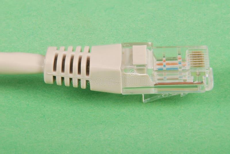 LAN-kabel och kontaktdon RJ45 royaltyfria bilder