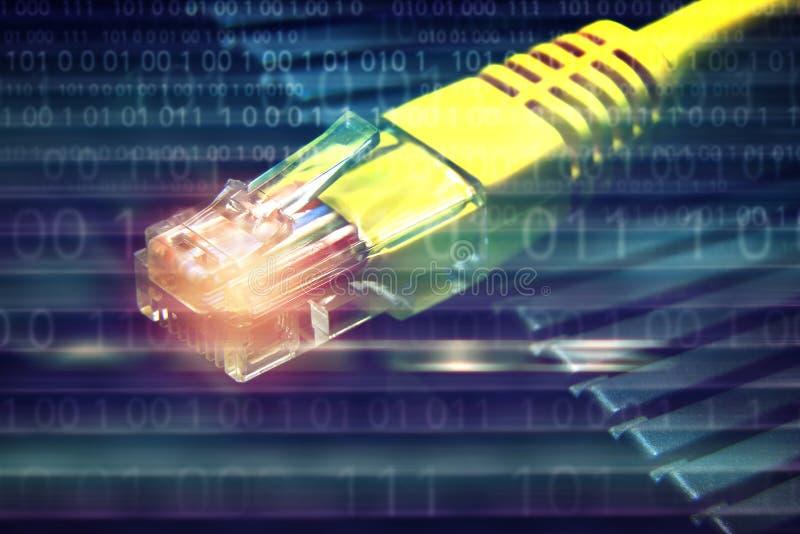 LAN-nätverkskabel på binär nummerbakgrund royaltyfri fotografi