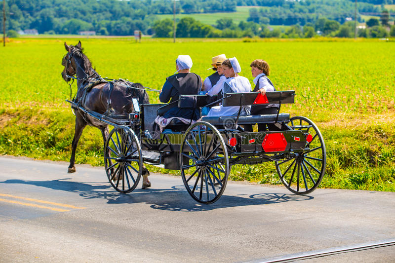 Lancaster County Amish Family in Wagon. Strasburg, PA - June 19, 2016: An Amish family riding in an open black wagon on a county road in Lancaster County, PA stock image