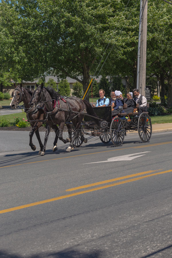 Lancaster County Amish Youth in Wagon. Intercourse, PA - June 12, 2016: Old Order Amish youths use horse drawn wagons as their primary transportation in rural royalty free stock photos