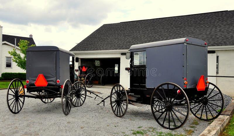 Lancaster okręg administracyjny, PA: Amish powoziki zdjęcia royalty free