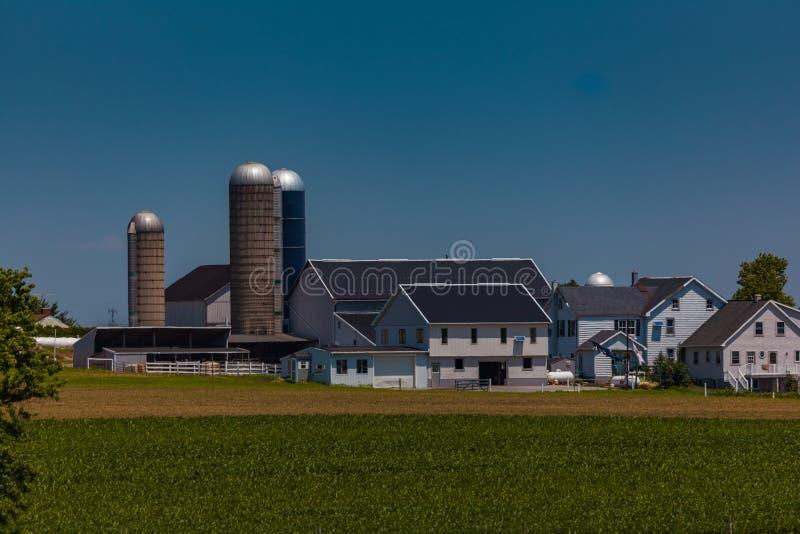 Lancaster okręgu administracyjnego PA gospodarstwo rolne w lecie obraz royalty free