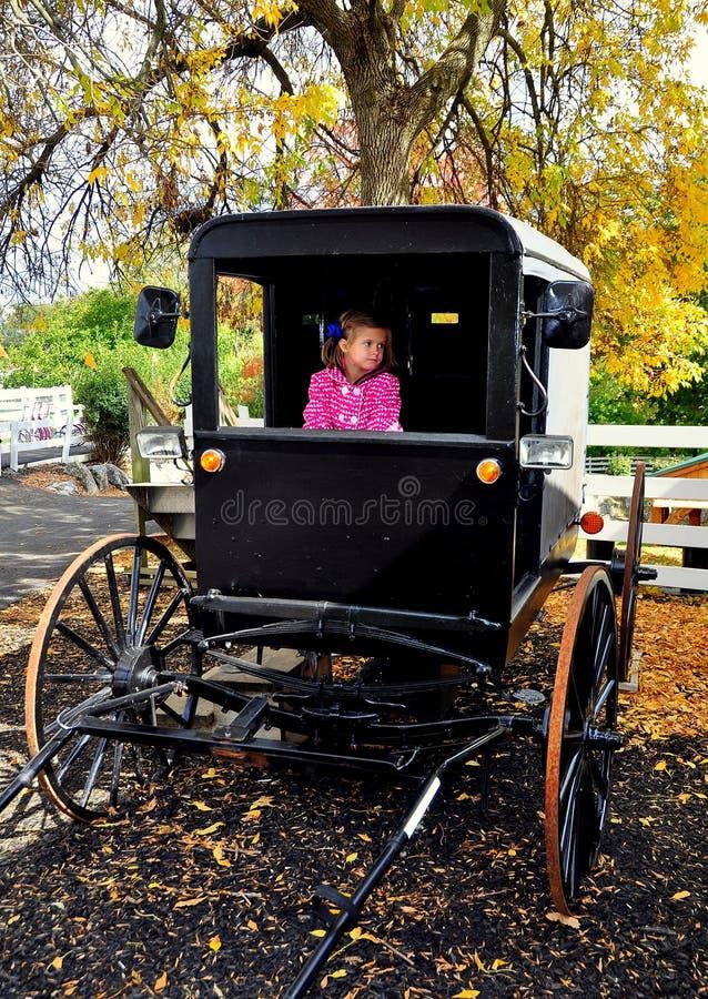 Lancaster, PA: Kleines Mädchen im amischen Buggy lizenzfreie stockfotografie