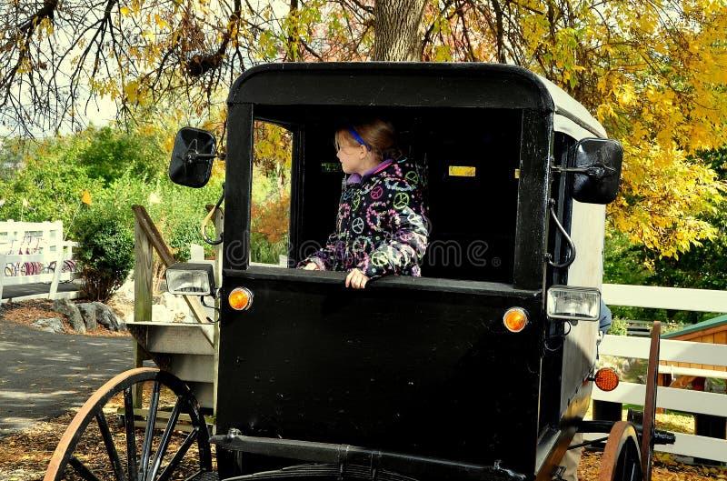 Lancaster, PA: Kleines Mädchen im amischen Buggy lizenzfreie stockfotos
