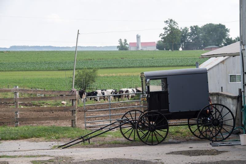 LANCASTER USA - JUNI 25 2016 - Amish folk i Pennsylvania arkivfoton