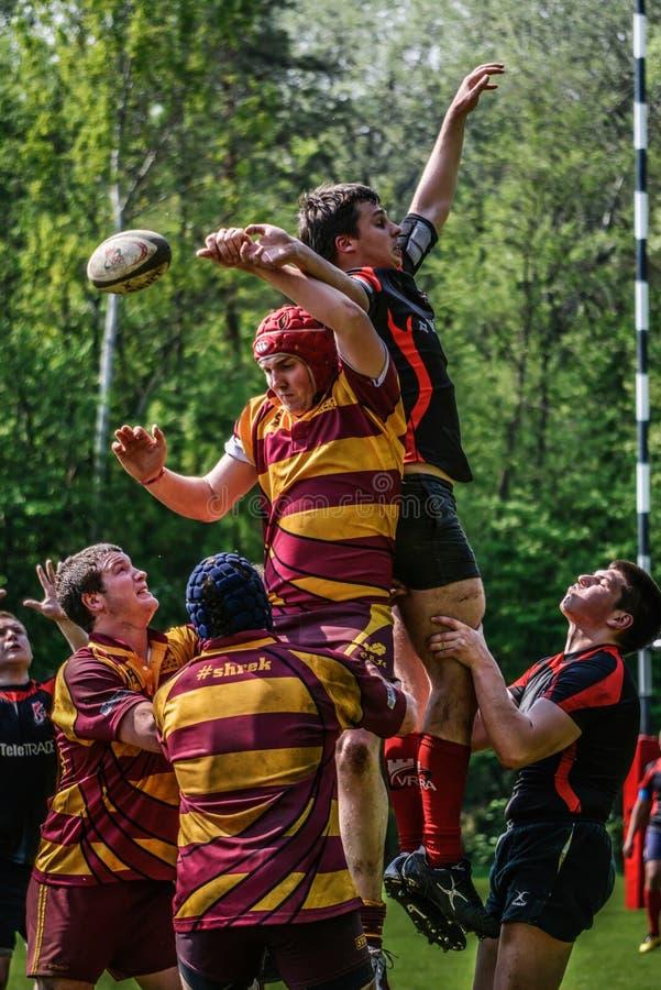 Lance da bola de rugby imagens de stock