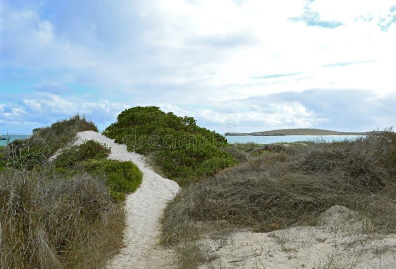 Lancelin Beach fotografia stock libera da diritti