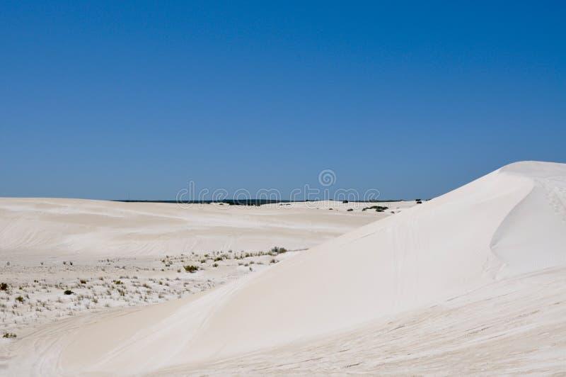 Lancelin Sand Dunes in Westelijk Australië stock foto's